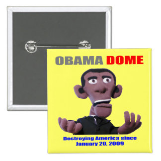 Obama begging for pinback button