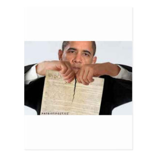 Obama Ripping Up the Constitution Postcard