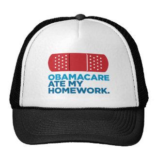 Obamacare Ate My Homework Cap
