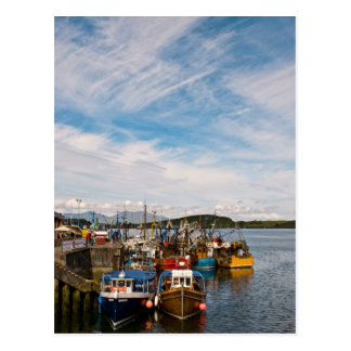 Oban Harbour Fishing Boats Postcard