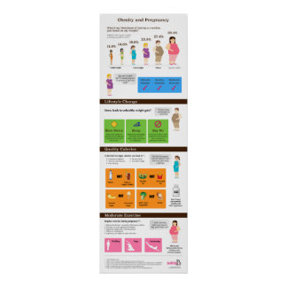 """Obesity and Pregnancy 12"""" x 36"""" Infographic Poster"""