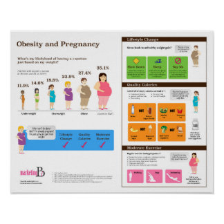 """Obesity and Pregnancy 20"""" x 16"""" Infographic Poster"""