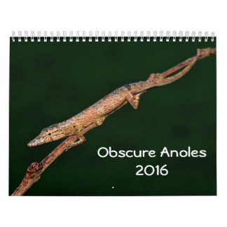 Obscure Anoles 2016 - An Anole Annals Production Calendar