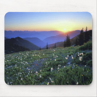Obstruciton Point Sunset, Olympic NP, WA, USA Mouse Pad