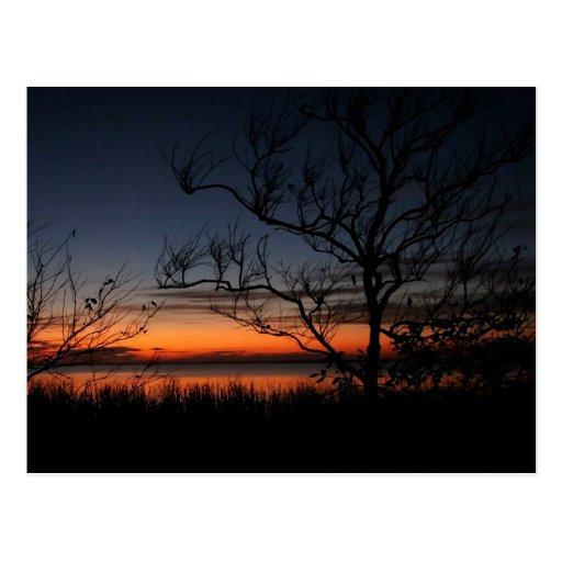 OBX Sound Sunset Post Card
