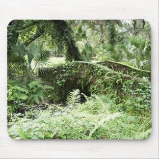 Ocala Florida Forest Footbridge mousepad photo art