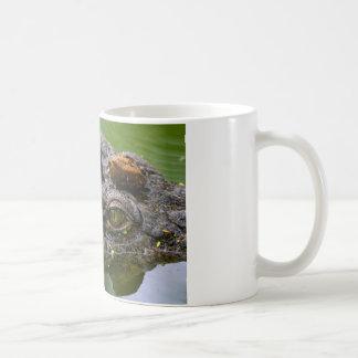 occhio di coccodrillo.jpg coffee mug