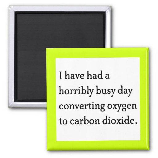ocd refrigerator magnet