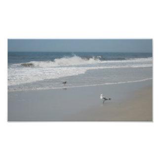 Ocean Beach Scene Photo Art