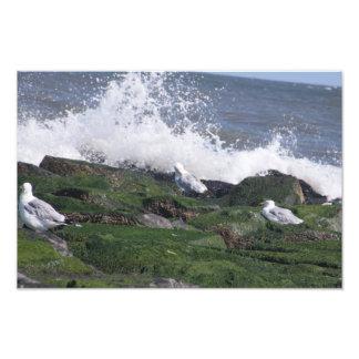 Ocean City Jetty Photo Art