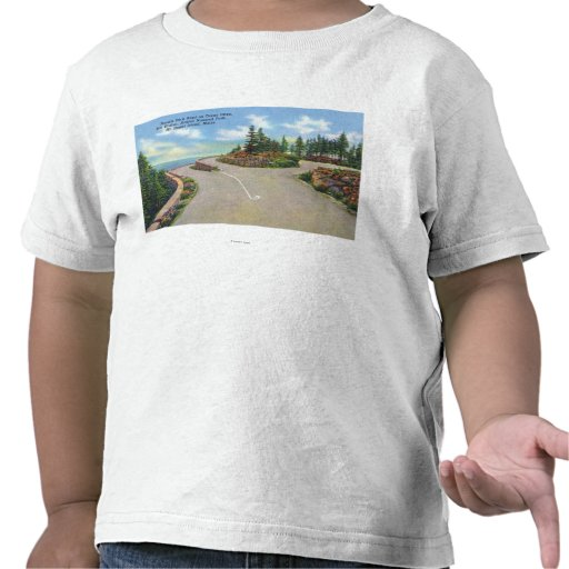 Ocean Drive Double Deck Road View T Shirts