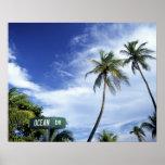 Ocean Drive' road sign, South Beach, Miami, Florid Poster