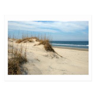 Ocean Dunes (customize) Postcards