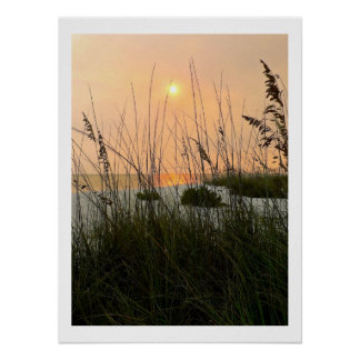 Ocean Dunes Poster