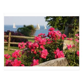 Ocean, Flowers Postcard