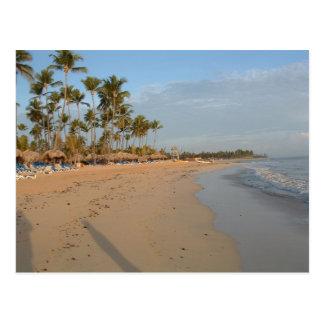 Ocean Front Postcard