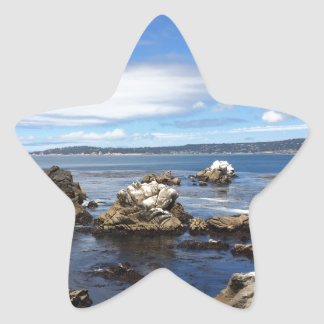 Ocean Love Star Sticker