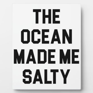 Ocean Made Me Salty Plaque