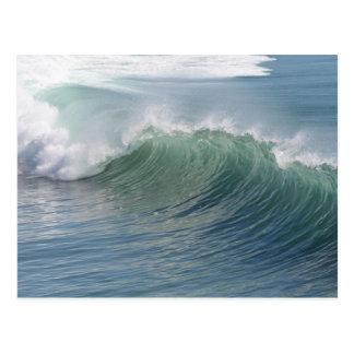 Ocean Splendor Postcard
