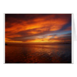 Ocean sunset cards