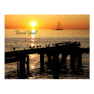 ocean sunset with seagulls wedding thank you card postcard