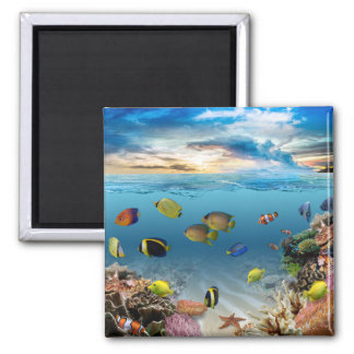 Ocean Underwater Coral Reef Tropical Fish Magnet
