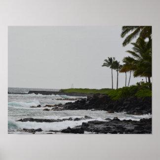 Ocean View at Poipu Poster