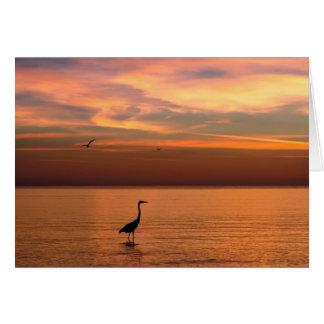 Ocean View at Sunset Greeting Card