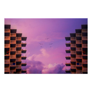 Ocean View Rooms Seagulls II Poster