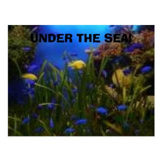 ocean view, UNDER THE SEA! Postcard