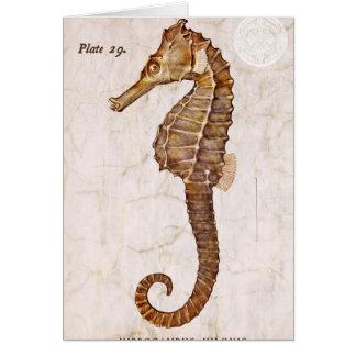 Ocean Vintage Sea Horse Creature Seahorse Card