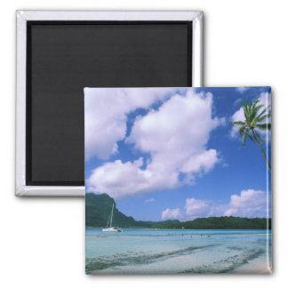 Oceania, French Polynesia, Tahiti. View of Square Magnet