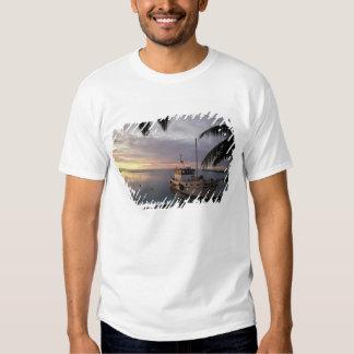 Oceania, Polynesia, Cook Islands, Aitutaki, T-shirt