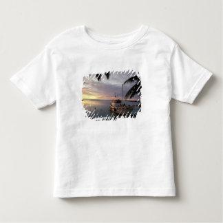 Oceania, Polynesia, Cook Islands, Aitutaki, T-shirts