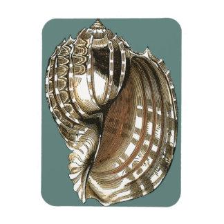 Ocean's Jewel Magnet