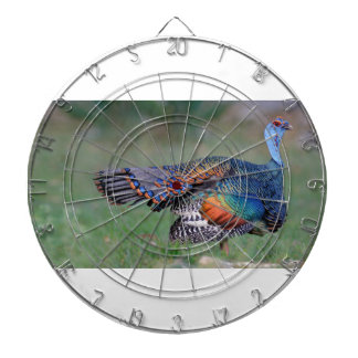 Ocellated Turkey in Guatemala Dartboard