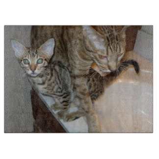 ocicat Tawny_kitten_with_cinnamon_mother Cutting Board