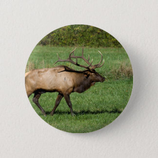 Oconaluftee Elk 6 Cm Round Badge