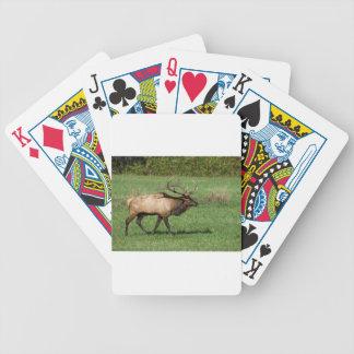 Oconaluftee Elk Bicycle Playing Cards