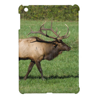 Oconaluftee Elk Cover For The iPad Mini