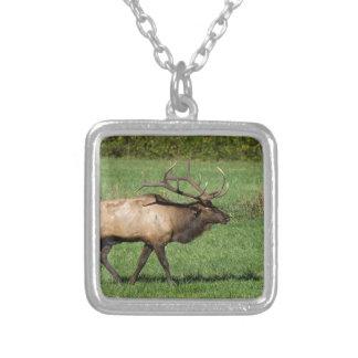 Oconaluftee Elk Silver Plated Necklace