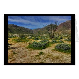 Ocotillo Borrego Springs 2017 Card