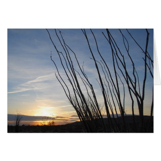 Ocotillo sunrise card