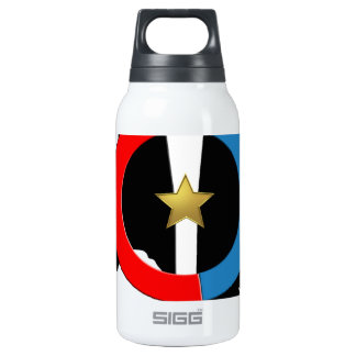 OCT 0.3 LITRE INSULATED SIGG THERMOS WATER BOTTLE