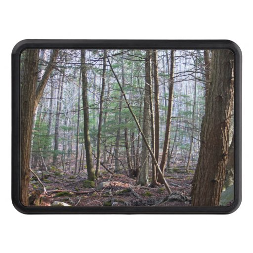 October Mountain Trailer Hitch Cover