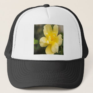 October Rose Trucker Hat