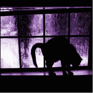 October Showers Cat Silhouette At Window 2 Purple Photo Sculpture