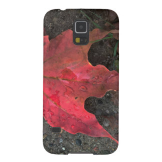 October Sunrise Case For Galaxy S5