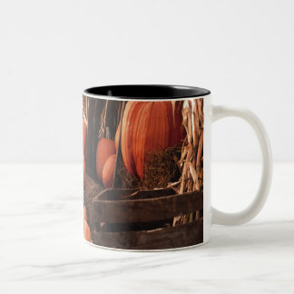 Octoberfest Two-Tone Mug