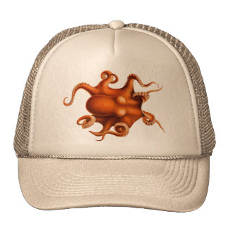 Octopus Illustration Cap